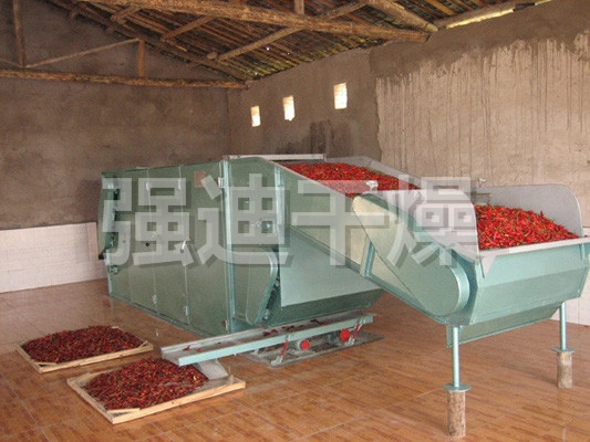 DWC series dehydrated vegetable belt dryer